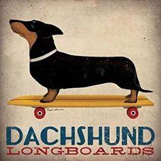 Longboards-cm57x57-poster-lamina-para-cuadro, teckel, perro salchicha