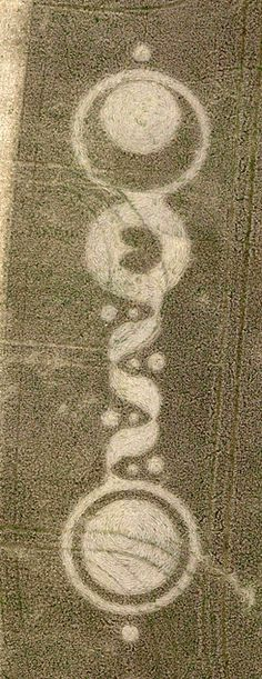 This one was reported on September 26th 2010 at the Baltic Farm near Bishops Canning Wiltshire, UK ! At first glance, this one gives the impression of Chakras ... the rising Kundalini Shakti well represented by the serpentine/wavy part of the formation with small satellite circles on the sides ... moving up through the Heart Chakra !