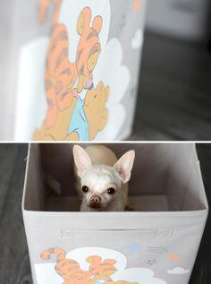 Un coffre à jouets mignon et pas cher pour votre chien KIABI - Howard le chichi blogueur
