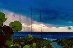 Boca Raton Beach, Sunrise Pictures, Us Beaches, South Florida, Wind Turbine, Modern Contemporary, Landscaping, Ocean, Sunset