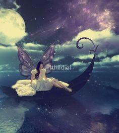 A Moonlight Fairy Serenade