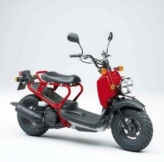 The Zoomer is one of oki-ni's latest products–a scooter collaboration with Honda. Honda Ruckus, Honda Zoomer, Honda Scooters, Motos Honda, Vintage Motorcycles, Cars And Motorcycles, 50 Cm3, Honda Metropolitan, Scooter 50cc