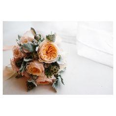 David Austin Roses Goodness | Heart Lovely - wedding, fashion, lifestyle