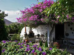 Ház virággal, Lanzarote, Kanári-szigetek Outdoor Rooms, Outdoor Gardens, Gazebos, Flora, Container Flowers, Tenerife, Nature Photos, Amazing, Awesome