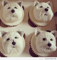 These doggie cupcakes for humans are so adorable and would be easy to recreate, don't you think? Dog lovers of every breed will really enjoy these. Puppy Cupcakes, Puppy Cake, Animal Cupcakes, Cupcake Cookies, Heart Cupcakes, Cupcake Toppers, Cakepops, Cute Cakes, Cute Food