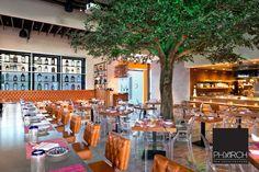 Restaurant architecture at Sumo Maya by PHX Architecture #deisgn #architecture