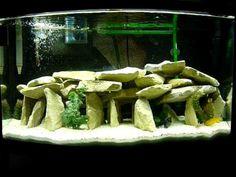 Cichlid aquariumscape