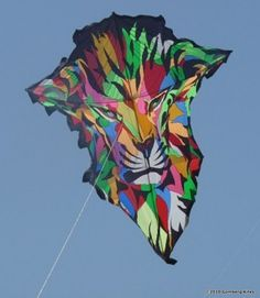 amazing kites photos - Google Search