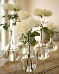White roses, my favorites