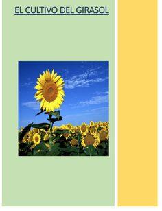 Libros de Agronomia Gratis: GUIAS