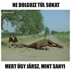 """Sanyiiiii!! Legalább a bicskám lett volna nálam!!!""😂😂😂 College Humor, School Humor, Wednesday Humor, Everything Funny, Medical Humor, Morning Humor, Funny Cute, Funny Photos, Funny Jokes"