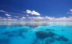 clear sea - Google zoeken