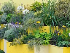 Container and Small-Space Gardening: Cover a wall or create a barrier with a tiered planter.  From DIYnetwork.com