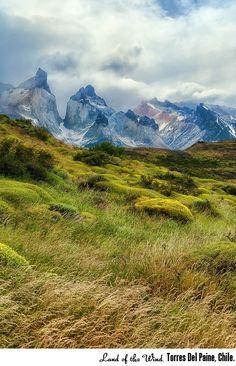 Torres Del Paine -- I'm hoping to visit this awesome place once again. Truly a great place for a nature lover. Beautiful Places In The World, What A Wonderful World, Places Around The World, Great Places, Places To Go, Around The Worlds, Amazing Places, Chile, Wonders Of The World