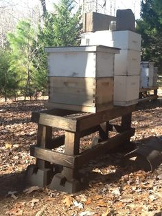 Hive stand legs painted with burnt motor oil. How to keep ants out of bee hives.