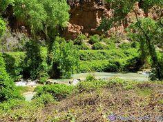 #Havasupai19 #HavasupaiFalls #VegasLocal #travel #travelblogger #getoutside #hike #adventure #backpacking #girlswhohike #girlswhobackpack #AZCulture #SouthwestGallery #Arizona #GrandCanyon #roadtrip #nature #BeaverFalls #HavasuFalls #MooneyFalls #Havasupai #Supai #GetOutdoors #backpack #camping #MyInspirationalPlace #waterfalls #chasingwaterfalls Havasupai Falls, Beaver Falls, Backpack Camping, Get Outdoors, Get Outside, Garden Bridge, Waterfalls, Backpacking, Grand Canyon