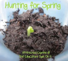 Hunting for Spring Print  your Own Observation Sheet and Spring Journal + Vocabulary Sheet.
