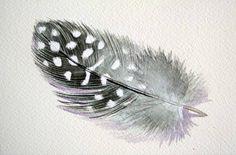 guinea fowl feathers - Google Search