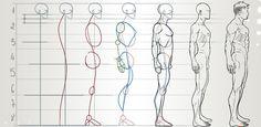 анатомия художника - Поиск в Google