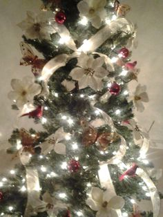 My christmas tree - 2013