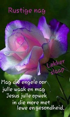 Good Night Messages, Good Night Wishes, Goeie Nag, Afrikaans Quotes, Night Quotes, Morning Greeting, Happy Quotes, Beautiful Landscapes, Qoutes