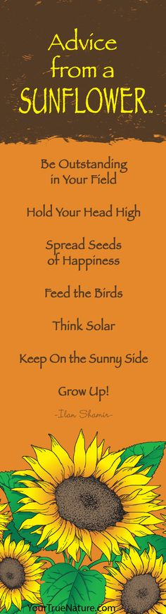 Advice from a Sunflower - Bookmark - Your True Nature