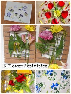 6 Fun Flower Activities for Kids!  (Great way to use up any Valentine's day bouquets!)