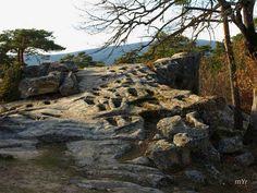 Necropolis de Cuyacabras-Quintanar de la Sierra- #Pinares #Burgos #Soria #Spain