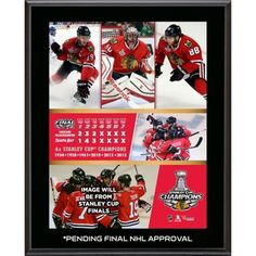 Chicago Blackhawks 2015 Stanley Cup Champions 10.5'' x 13'' Sublimated Plaque
