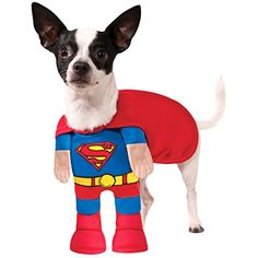 Rubies Costume Company DC Comics Superman Pet Costume, Medium ** Check this awesome product by going to the link at the image. (This is an affiliate link) #ApparelAccessories