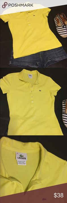 Lacoste polo shirt blue 7 mens gator logo size 2xl recent saks fifth lacoste yellow fitted knit polo sciox Images