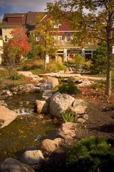 Natural bog filter, multiple small waterfalls along a 75' twisting stream that runs through Dodson Place in downtown Geneva.