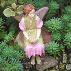 Mallow Fairy