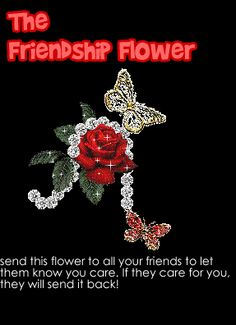 Friendship Flower Comments, Graphics and Greetings Codes for Orkut, Friendster, Myspace, Tagged Butterfly Flowers, Beautiful Butterflies, My Flower, Friendship Flowers, Friend Friendship, Quote Friendship, Happy Friendship, Sister Friends, Real Friends