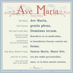 The Ave Maria in English and Latin. Prayers To Mary, Novena Prayers, Catholic Prayers, Hail Mary Prayer Catholic, Short Prayers, Catholic Saints, Catholic Beliefs, Catholic Quotes, Hail Mary In Latin