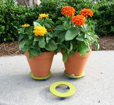 Make a plant stand with items from the craft store