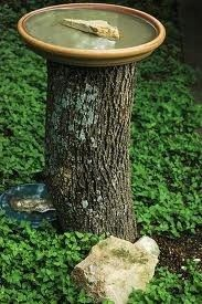 Birdbath from an old tree trunk and flower pot tray.