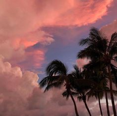 Pretty Sky, Beautiful Sky, Beautiful Places, Beautiful Women, Summer Pictures, Pretty Pictures, Sky Aesthetic, Sunset Sky, Pink Sunset