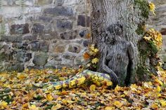 El artista alemán Jörg Düsterwald, experto en bodypainter, se ha asociado con el fotógrafo Tschiponnique Skupin para crear este acertijo.Luego de pintar por completo a la modelo Nadine, juntos la han hecho posar en esta fotografía de tal manera que se pierda en el paisaje.¿Ya la has visto? ¡Vamos,