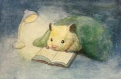 Sukeroku the hamster reads a ebook earlier than turning off the sunshine artist Gotte Art And Illustration, Illustration Mignonne, Illustrations, Cute Animal Drawings, Cute Drawings, Pretty Art, Cute Art, Bel Art, Baby Animals