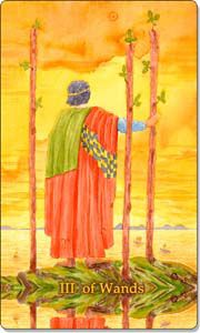 He is contemplating his future and possibly the journey ahead of him. He wants to settle down, but must first wander and roam until he finds his true home. This card too is the seeker of knowledge and truth. He searches until he finds what he is looking for.