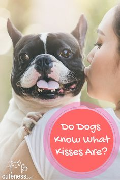 You love to pucker up for your pooch, but does she understand what you're doing?