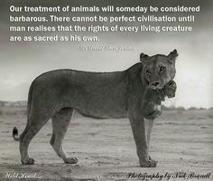 Our treatment of animals will someday be considered  barbarous. There cannot be a perfect civilisation until  man realises that the rights of every living creature  are as sacred as his own