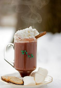Even better than cocoa...cocoa and my favorite cookies!  Plus LOTS of whipped cream! <3 Trish