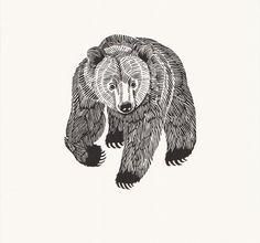 Graham Blair - Bear (printed on handmade Japanese kozo paper) Bear Tattoos, Body Art Tattoos, Ship Tattoos, Ankle Tattoos, Arrow Tattoos, Word Tattoos, Art D'ours, Ink Art, Animal Drawings