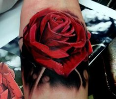 Red Rose Tattoo - Kyle Cotterman http://tattoosflower.com/red-rose-tattoo-kyle-cotterman/