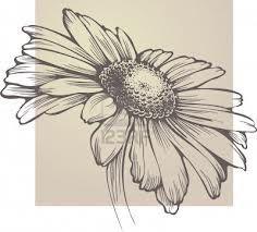 chamomile flower tattoo - Google Search