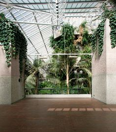 The Barbican Conservatory in London / photo by Luke Hayes