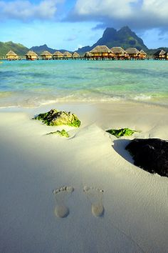 """Bora Bora - This place has been high on my bucket list since before I knew what a """"bucket list"""" was..."""