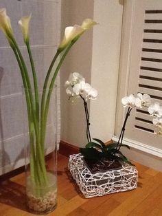 Calas y orquideas blancas